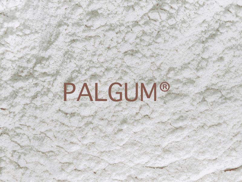 PALGUM ® locust bean gum